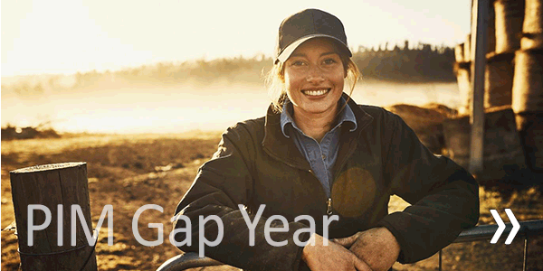 View PIM Gap Year Programme details